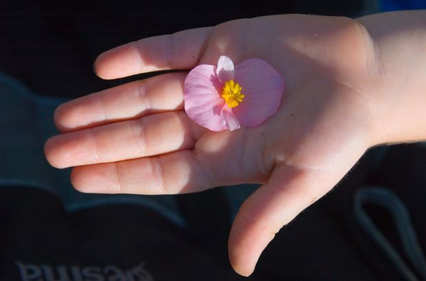 Hand.flower